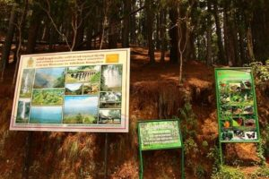 thangamale-bird-sanctuary