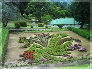 hakgala botanic